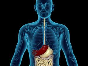 пищевод барретта симптомы и лечение